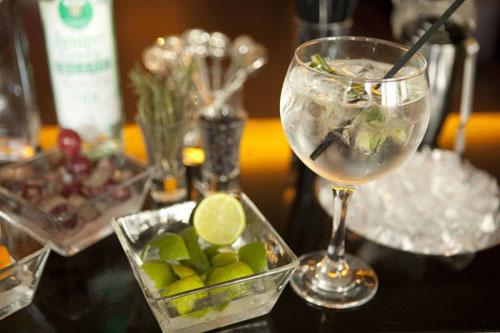 Alles voor de Gin Tonic vind je bij Vin Bouquet