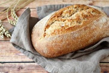 De fijnste broodmachines: zelf je brood bakken doe je zo