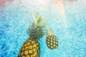 We vieren dag van de ananas vandaag!